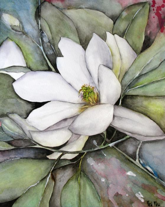 Pin Galery-magnolias-watercolour on Pinterest